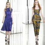 Beautiful Colored Rodarte Spring Summer 2012 Collection