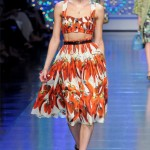 Colorful Ready-to-wear Dresses by Dolce & Gabbana_9