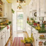 Bright Galley Kitchen Designs_1