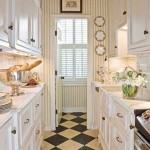 Bright Galley Kitchen Designs_3