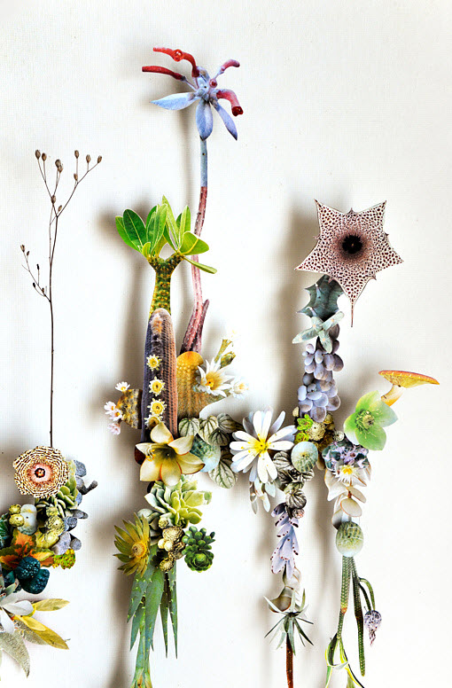 Amazing 3D Botanical Flower Constructions by Anne Ten Donkelaar_2