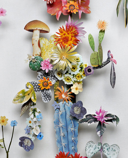 Amazing 3D Botanical Flower Constructions by Anne Ten Donkelaar_4