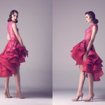 Vintage Colored Gowns From Fadwa Baalbaki Spring 2015 Couture Pink_1