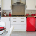 Coolest Mini Husky Retro Refrigerators