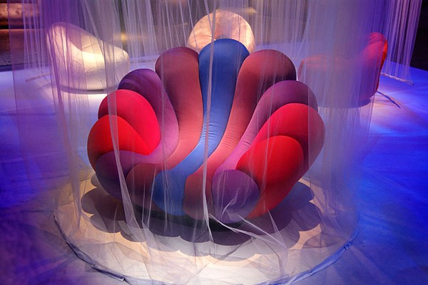 Anemone Colorful Chair