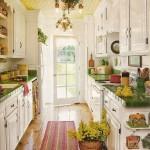 Bright Galley Kitchen Designs_1