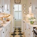 Bright Galley Kitchen Designs_3