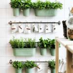 Unique Indoor Plant Container Ideas Metal Bucket